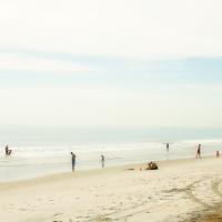 Seashore 96