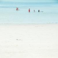 Seashore 26