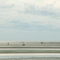 Seashore-7