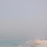 Seashore 63