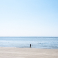 Seashore 22