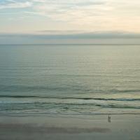Seashore 48