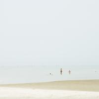 Seashore 23