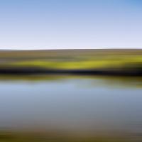 Saltmarsh109_600