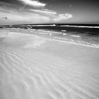 Shoreline176_600