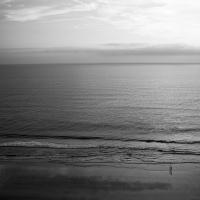 Shoreline204_600