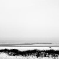 Shoreline20_600