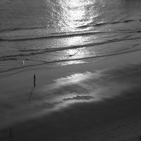 Shoreline44_600