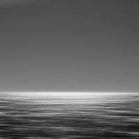 Shoreline596
